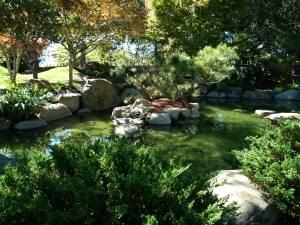 Japanese Garden, San Antonio